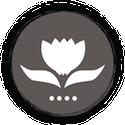 Logo Shiatsu praktijk Grootegast - Jannie Cruiming